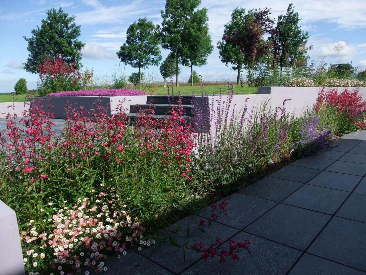 South derbyshire for Garden design derbyshire